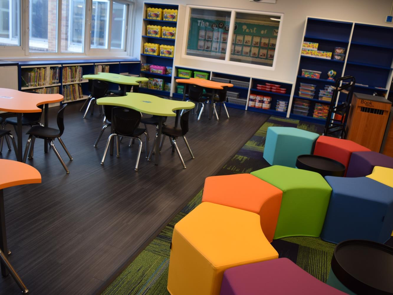 Elementary Library Pic 4
